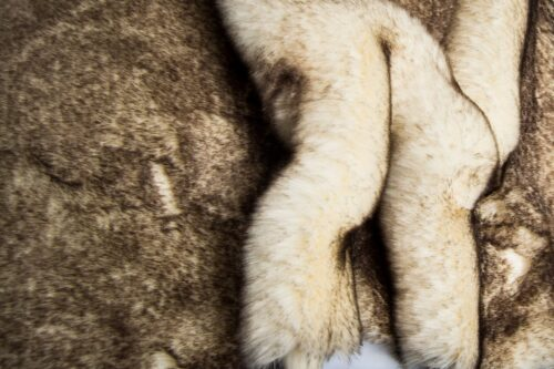 Faux fur by the metre Super soft white and brown mink imitation faux fur fabric – 1550 White / Brown