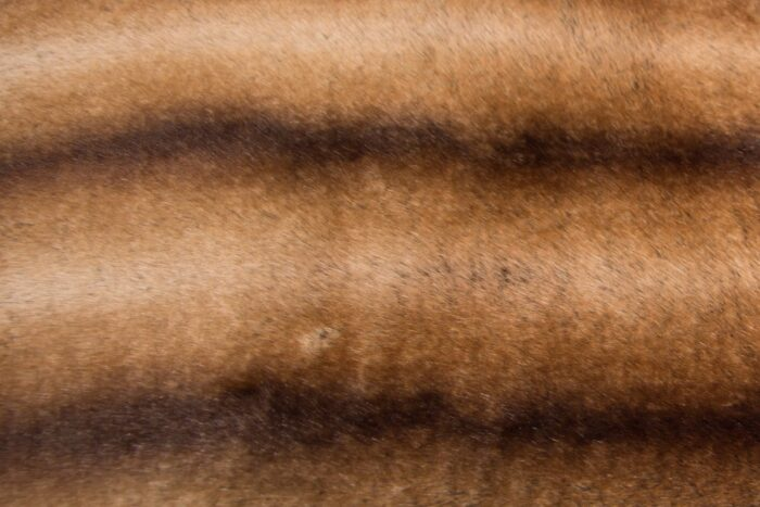 Faux fur by the metre Super soft faux fur fabric by the meter chinchilla gold / brown – 3011 Brown Gold