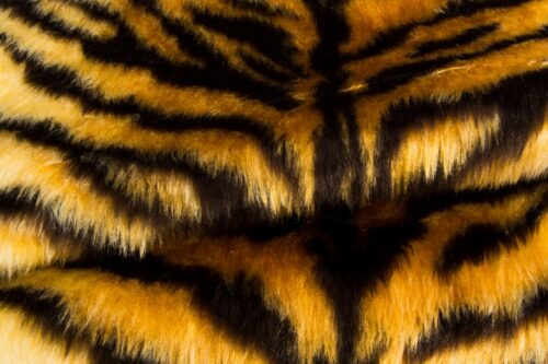 Faux fur by the metre Tiger faux fur fabric by the meter for disguise, costumes, cosplay – R2/60/3 FG791/1 Tiger