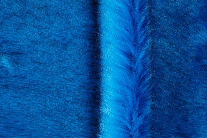 saluki_1539_siberian_ocean_blue